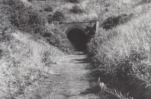 Grinkle Tunnel 1962
