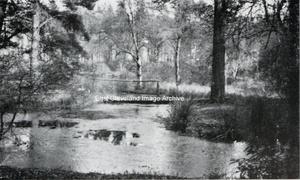 Corner Lake