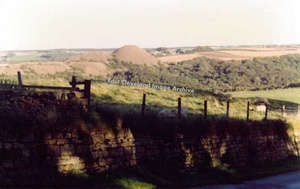 Liverton Mine Shale Heap