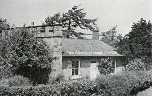 Nine Chimney's
