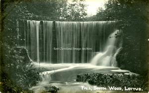 South Wood Fall, Loftus