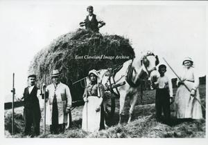 Hummersea Farm and Haymaking